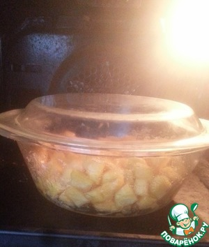 Now cover with a lid and put in oven (180*) for 30 minutes.