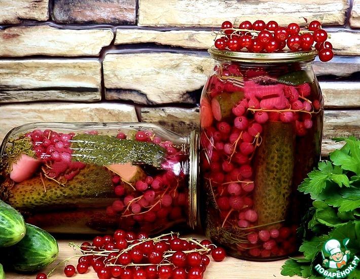 Рецепт: Соленые огурцы с красной смородиной на зиму